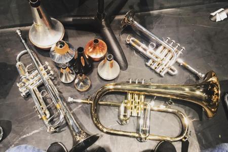 Trumpets trumpets trumpets!  © Rebecca Toal