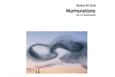 Bushra El-Turk: murmurations